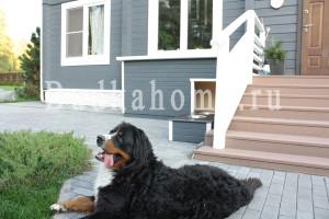 фото будка для собаки загород