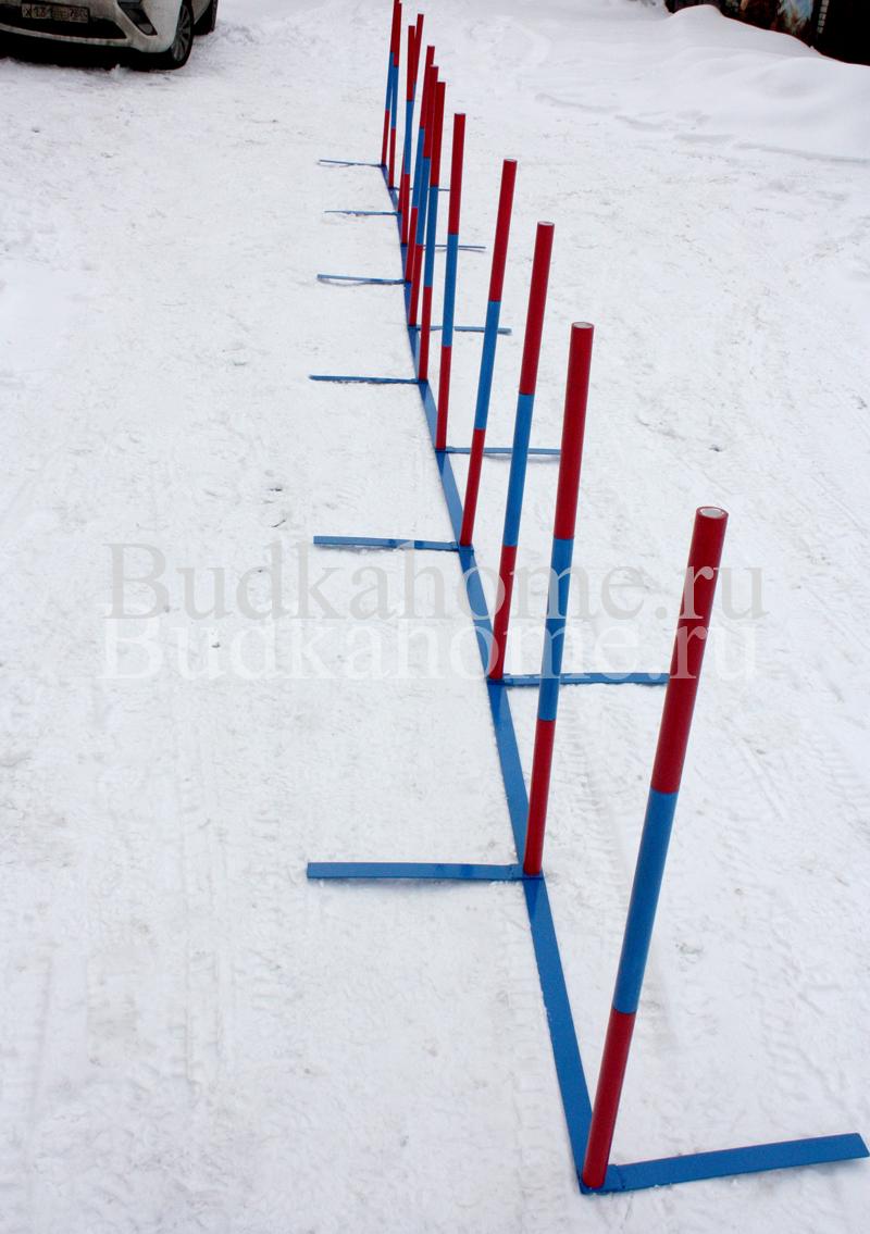 agility_slalom9.jpg