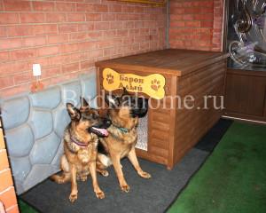 Будка для двух собак5