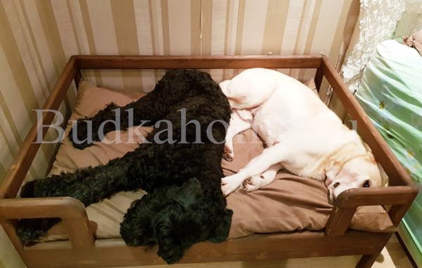 фото лежанка для собаки9