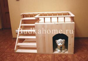 фото домик собаки