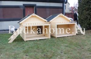 фото две будки для собак