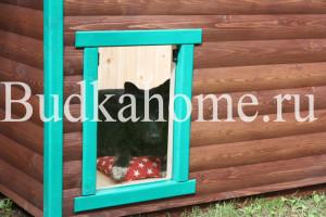 фото яркая конура для собаки