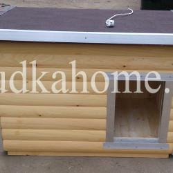 фото необычная будка для собаки