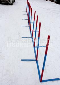 agility_slalom9