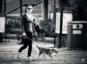 фото прогулка с собакой
