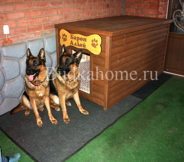 Будка для двух собак4