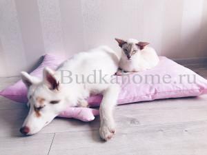 фото лежак для собаки