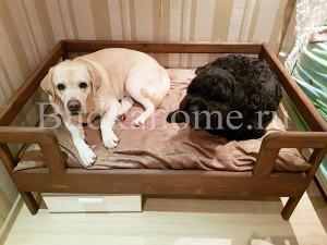 фото лежанка для собаки8